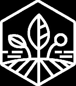 Skyclaim logo